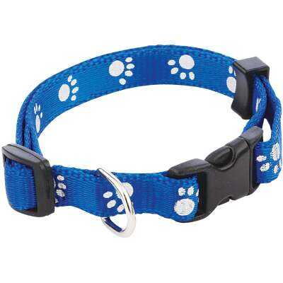 Westminster Pet Ruffin' it Reflective 8 In. to 12 In. Nylon Paw Print Dog Collar