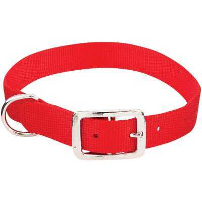 Westminster Pet Ruffin' it Adjustable 22 In. Nylon Dog Collar